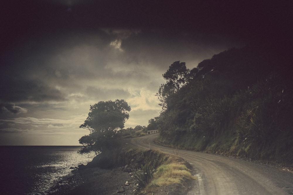 03_16_NZ_11301062