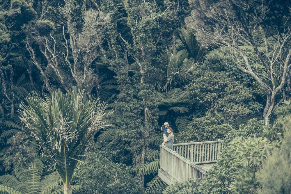 03_16_NZ_11501338