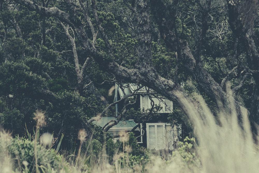 03_16_NZ_1200943
