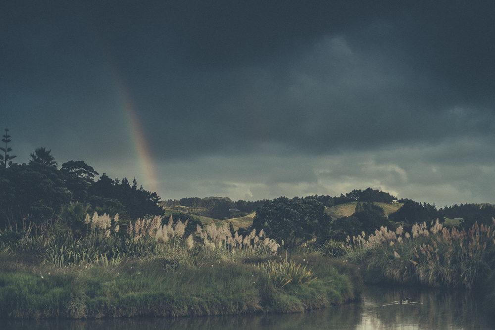 03_16_NZ_1200984