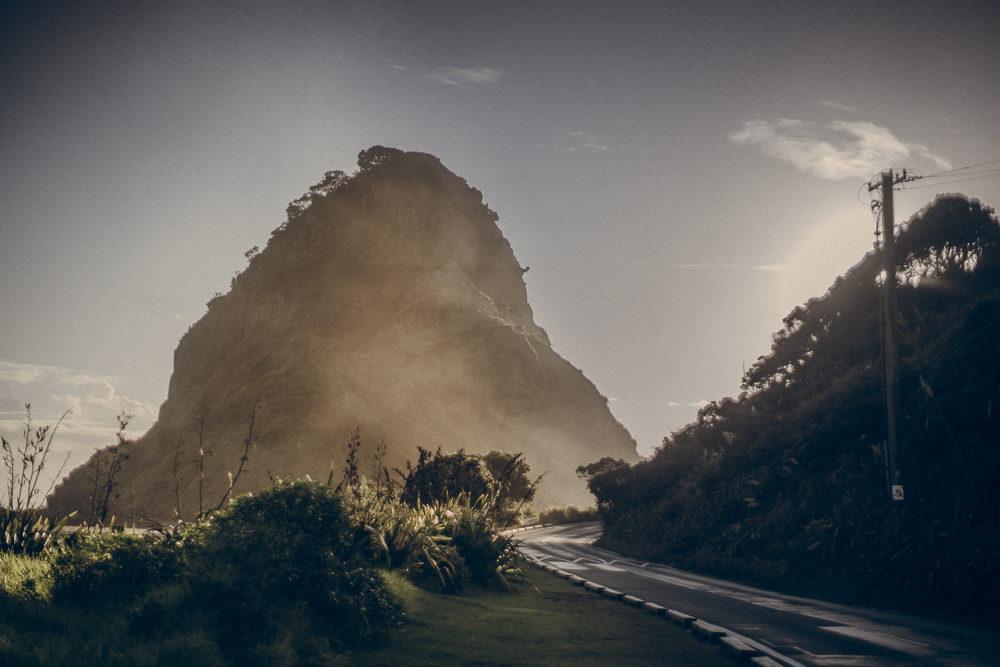 03_16_NZ_20201475